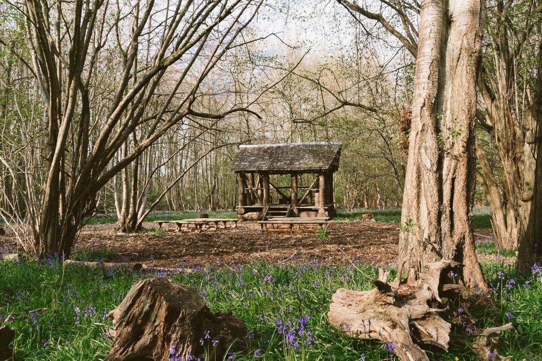 woodland wedding location surrey